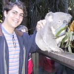 El koala y yo